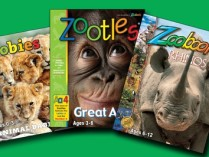 Zoobooks Coupons – 33% OFF Kids' Animal Magazines – Newspapers & Magazines Deals