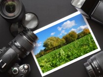 Isla Studio Coupons – 40% OFF Photography Classes – Professional Services Deals