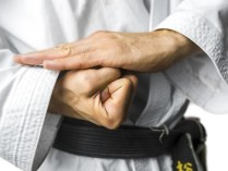 Family Martial Arts Studio Coupons – 50% OFF Martial-Arts Lessons – Martial Arts Training Deals