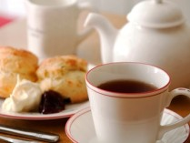 Chado Tea Room Coupons – 50% OFF Tea Fest and Events – Caf?e / Bar Offerings Deals